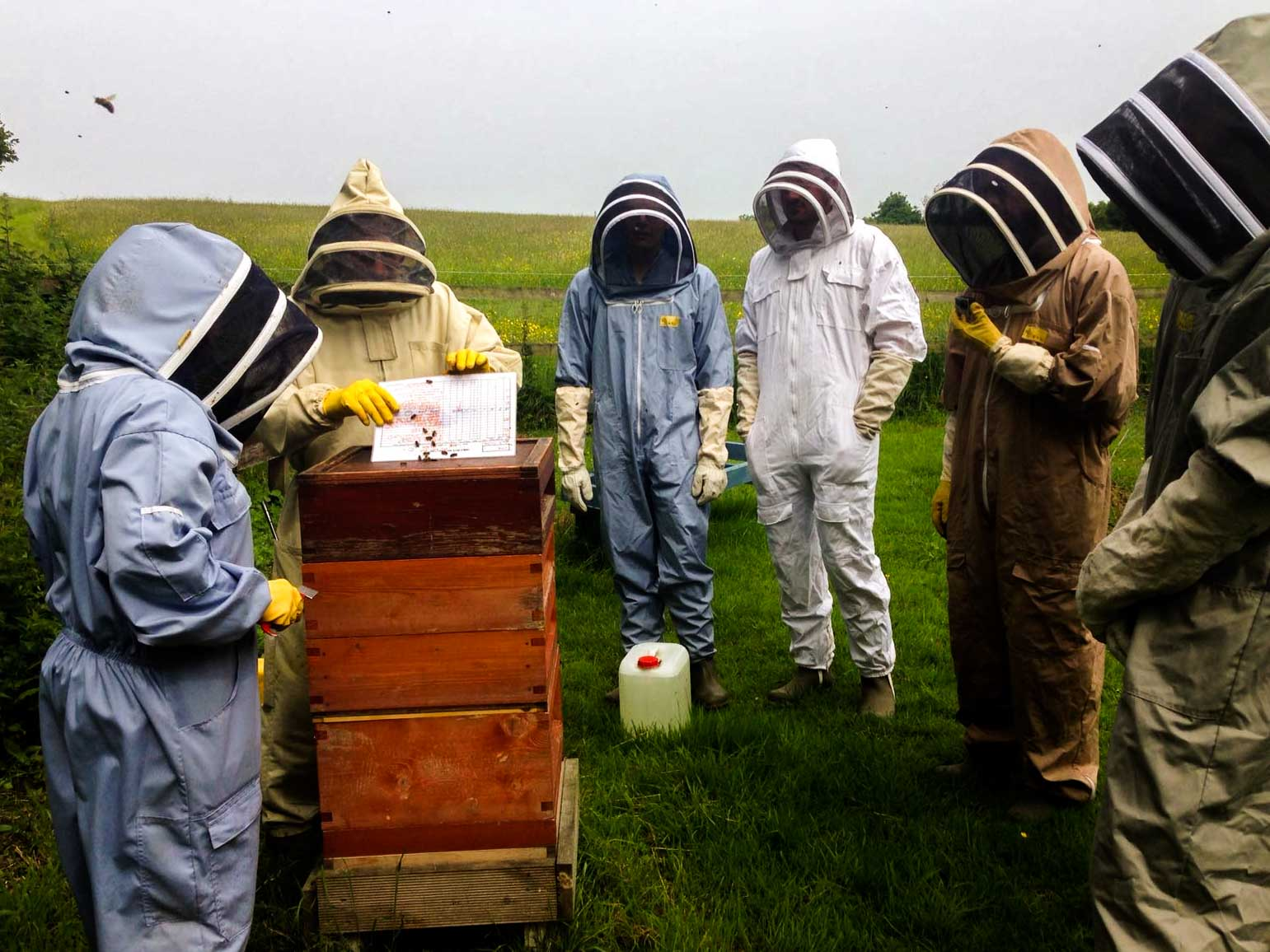 The HandleBards Go Bee-Keeping