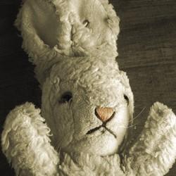 White Rabbit Red Rabbit Edinburgh Fringe